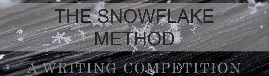 Try The Snowflake Method Competition