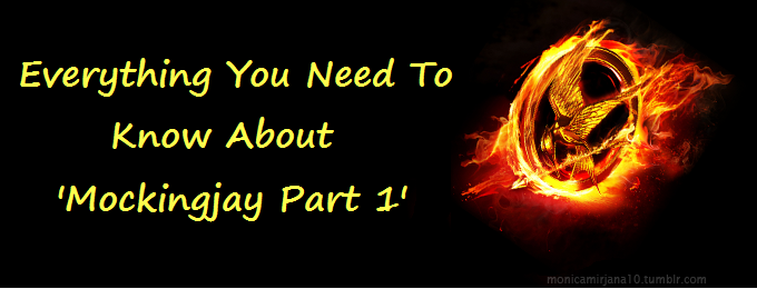 Everything You Need To Know About 'Mockingjay Part 1'